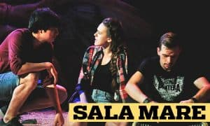 whit-sala-mare